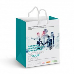 Medium Full Colour Printed Laminated Paper Carry Bag